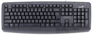 Genius KB110X Wired Desktop Keyboard - PS/2 (Black)